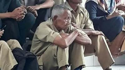 Pemerintah Wajib Tau, Yang Namanya Honorer K2 ya Pasti Tua