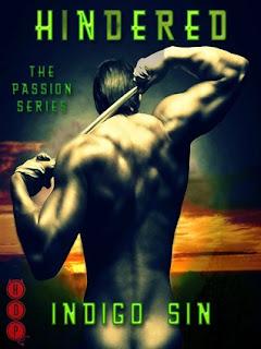 Review: Hindered & Broken by Indigo Sin