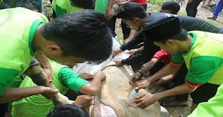 Polda Metro Jaya Kembali Sumbang Sapi Kurban untuk FPI Tahun ini