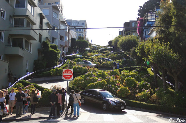 M-ii Photo : 10 choses à faire à San Francisco / 3. Descendre la Lombard Street