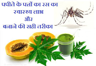 health-benefits-of-papaya-leaf-juice-dengue-hindi