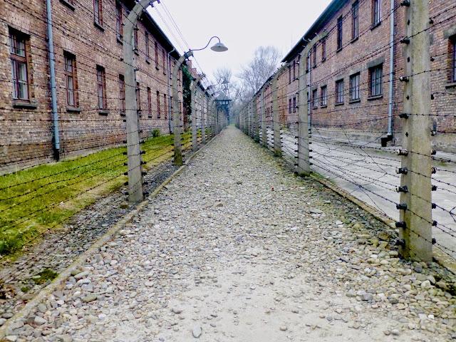 Auschwitz, caminos entre los barracones