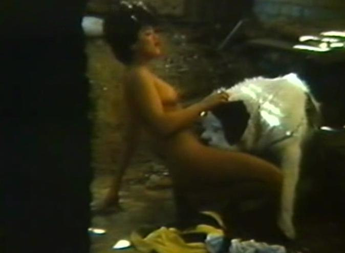Alucinacoes sexuais de um macaco - 1 10