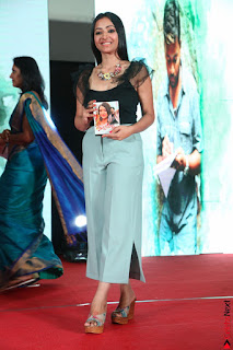 Swetha Basu in a Black Sleeveless Top Long Skirt at Mixture Potlam Movie Audio Launch 004.JPG