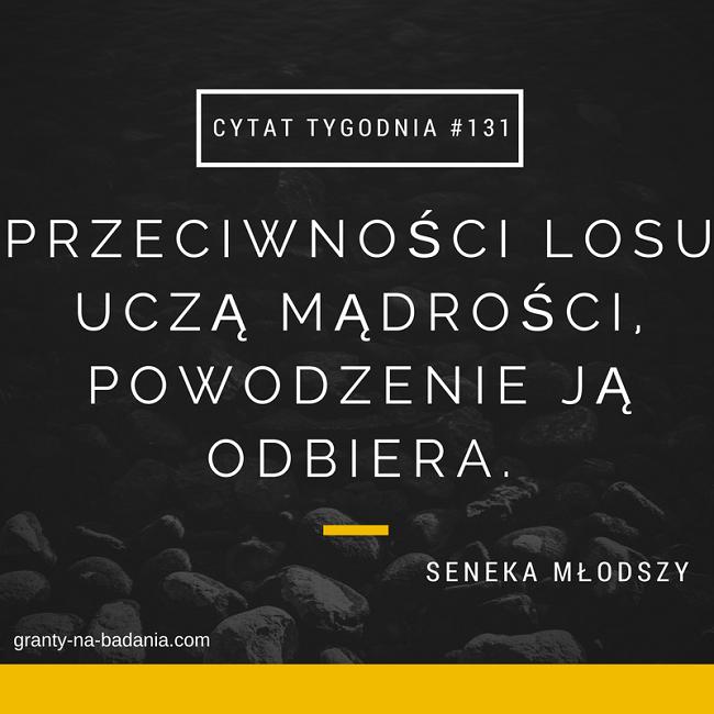 Przeciwności losu uczą mądrości, powodzenie ją odbiera - Seneka Młodszy