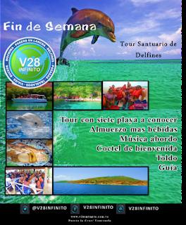 imagen Tour Santuario de Delfines