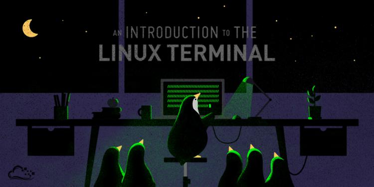 цветной терминал