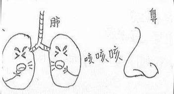 心對舌,肝對目,脾對口,肺對鼻,腎對耳,五臟要這樣養(反射區)