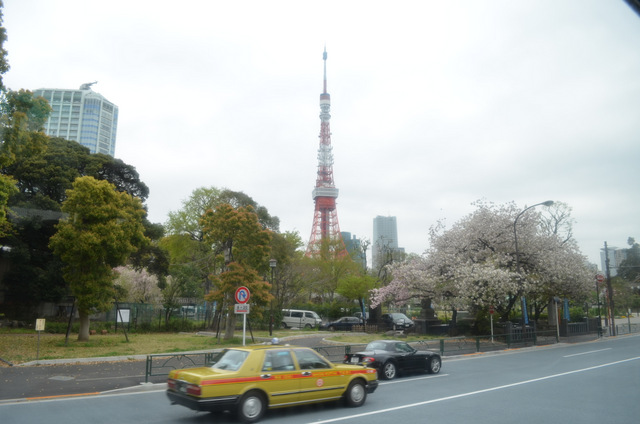 road leading to Tokyo Tower