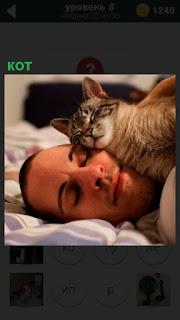 В постели мужчина, а на его щеке устроился кот спать своей мордой