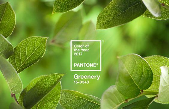 Az év trendszíne 2017 - Pantone: Grennery