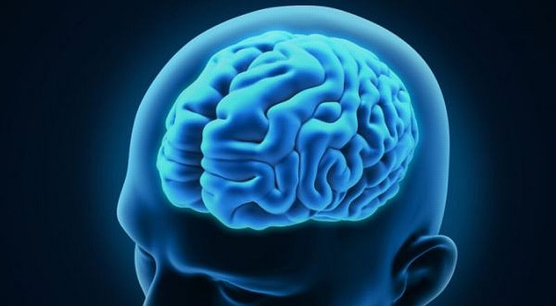 Beberapa Fenomena aneh dalam otak manusia - lensaglobe.com