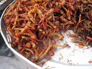 Makanan khas Serangga Goreng dari Thailand