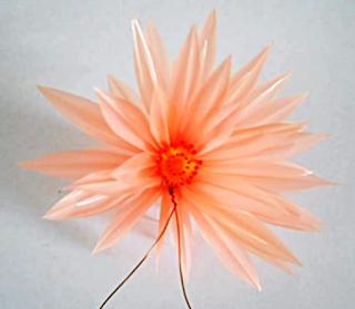Gambar Bunga Teratai Dari Sedotan Plastik Bekas