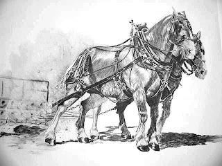 Dibujo a lápiz de caballos pecherones