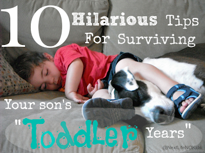 http://www.nextlifenokids.com/2014/07/10-hilarious-tips-for-surviving-your.html