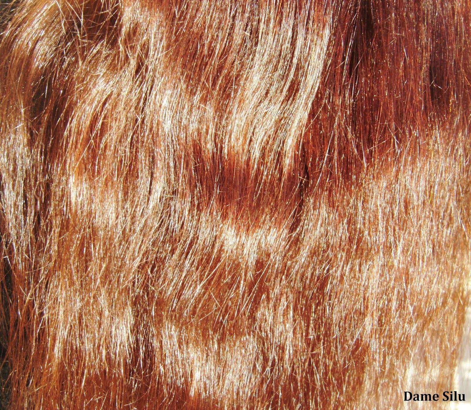 brosse cheveux poils de sanglier