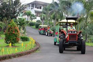 Kereta wisata di Agrowisata Bhakti Alam, Ngembal, Pasuruan