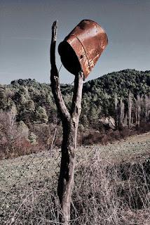 Dadaísmo agrario