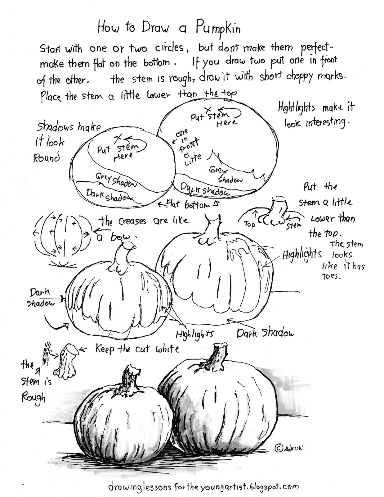 How To Draw Worksheets For The Young Artist How To Draw A Pumpkin Worksheet And Lesson