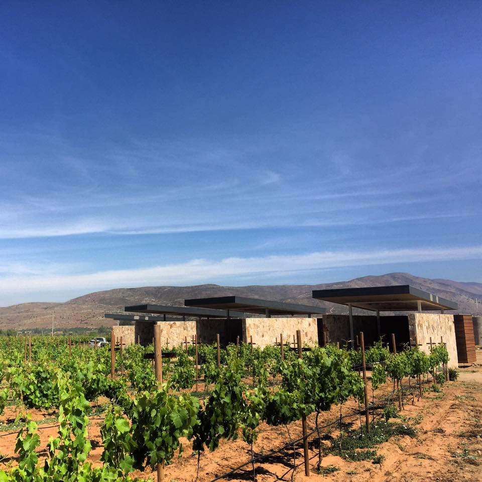 Valle de guadalupe casa urbina wine resort photos for Casa de guadalupe