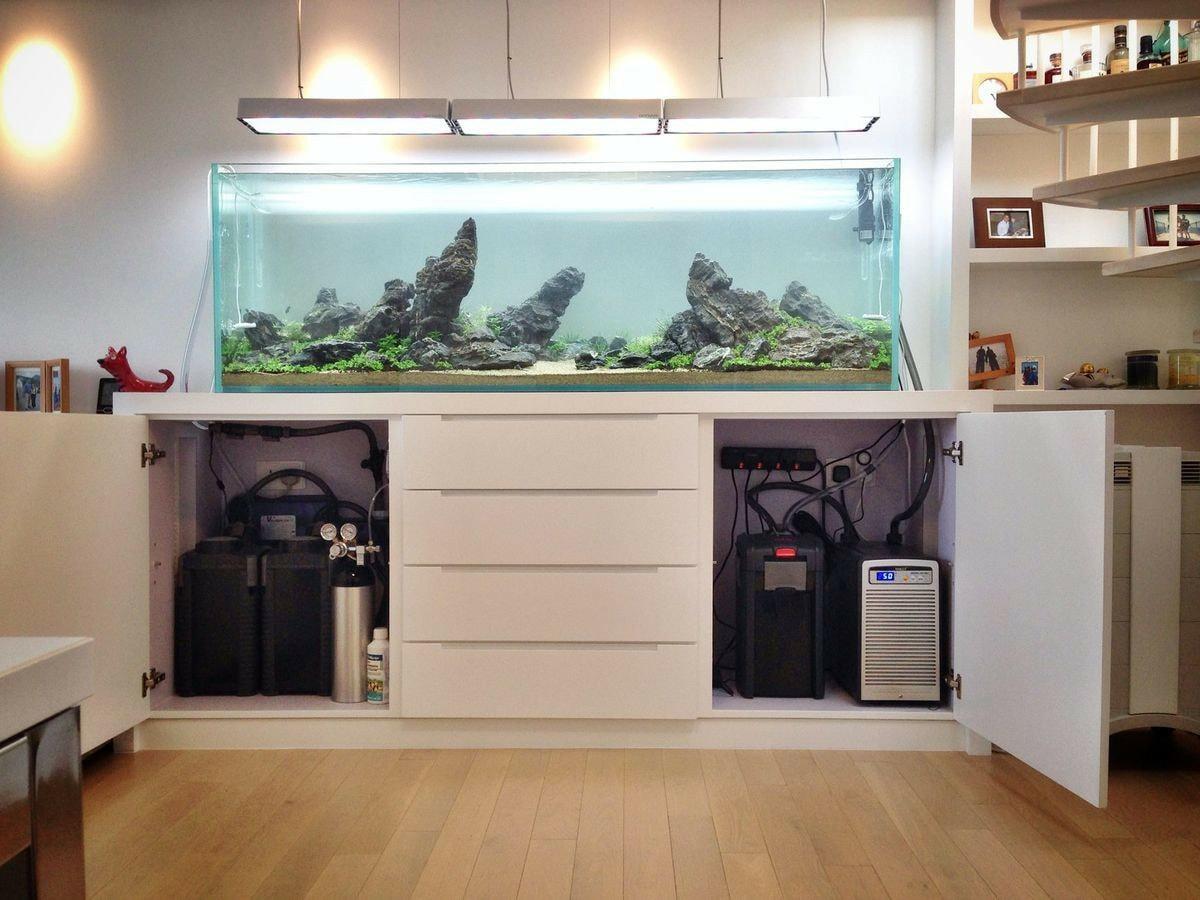 3 lọc thùng cho bể thủy sinh lớn