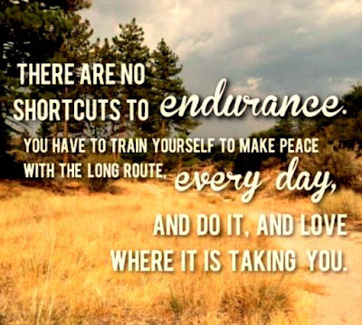 Best Endurance Quotes