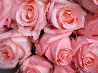 bunga-mawar-wedding-lamongan