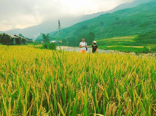 Trải nghiệm 3 cung đường ngắm mùa lúa vàng ở miền núi phía Bắc-3