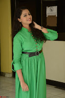 Geethanjali in Green Dress at Mixture Potlam Movie Pressmeet March 2017 064.JPG