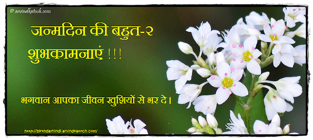 Hindi, Birthday Card, भगवान,  जीवन, खुशियों, जन्मदिन, शुभकामनाएं,