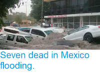 https://sciencythoughts.blogspot.com/2018/06/seven-dead-in-mexico-flooding.html