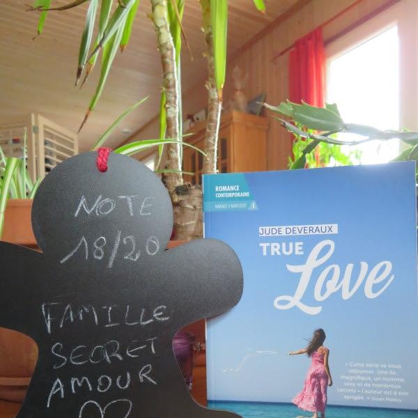 Mariage à Nantucket, tome 1 : True love de Jude Deveraux