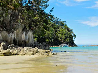 Torrent Bay Abel Tasman National Park  New Zealand