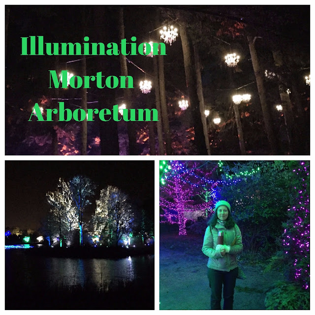 Exploring the Illumination Light Display at Morton Arboretum in Lisle, Illinois