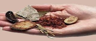 وصفة لعلاج البواسير الداخلية بالاعشاب
