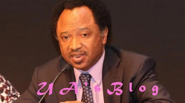 Shehu Sani reveals what he did after Senate mace was snatched