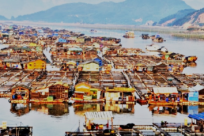 Tanka People China -  The Floating Homes