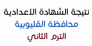 نتيجة الشهادة الإعدادية الثالث الاعدادي محافظة القليوبية 2018 التيرم الثاني برقم الجلوس عبر البوابة الإلكترونية