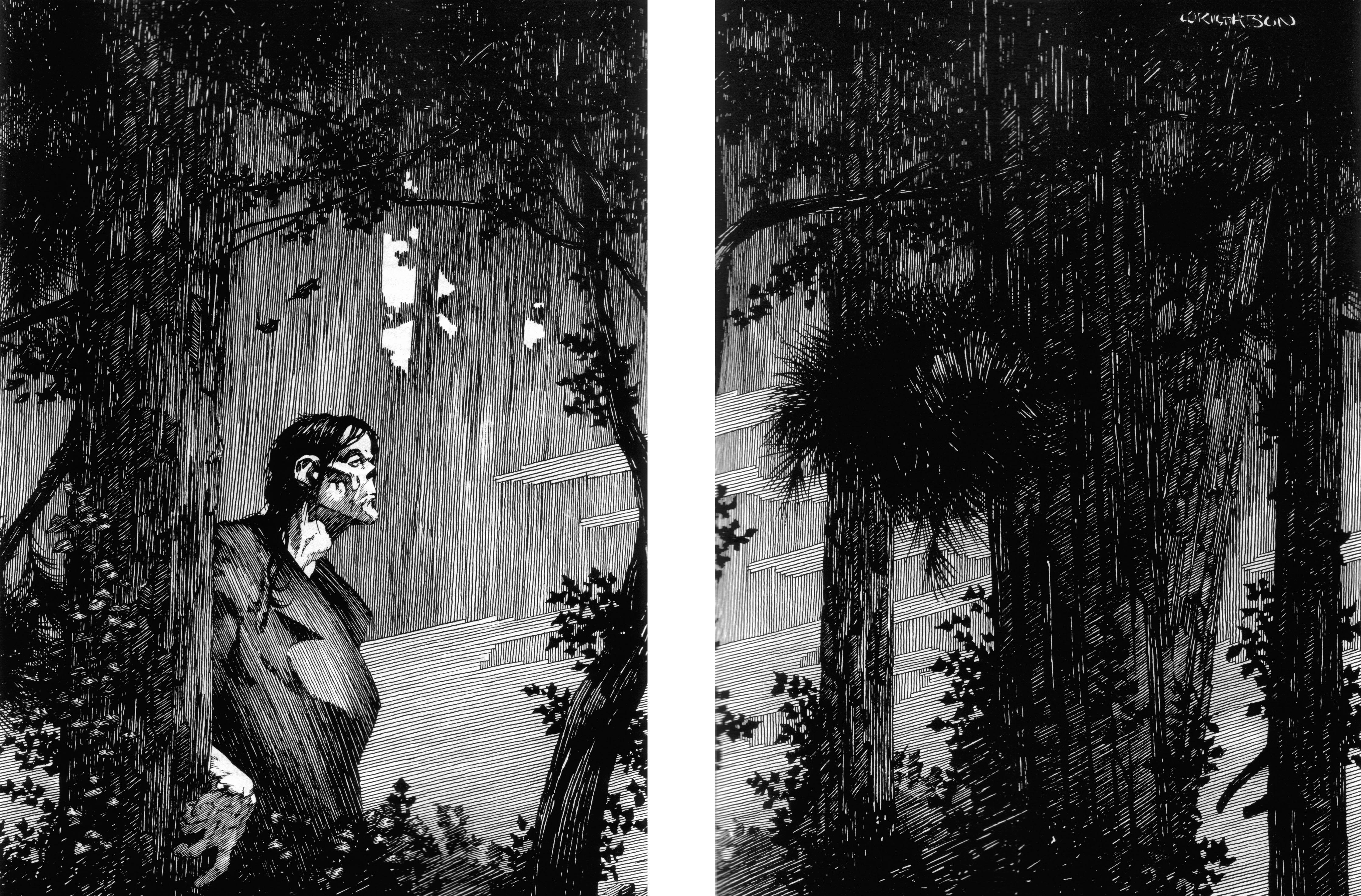 Read online Bernie Wrightson's Frankenstein comic -  Issue # Full - 21