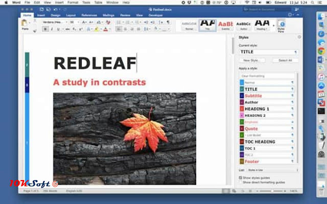 Microsoft Office 2008 for Mac OS Direct Download Link