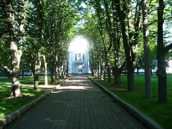 Конотоп. Міський парк
