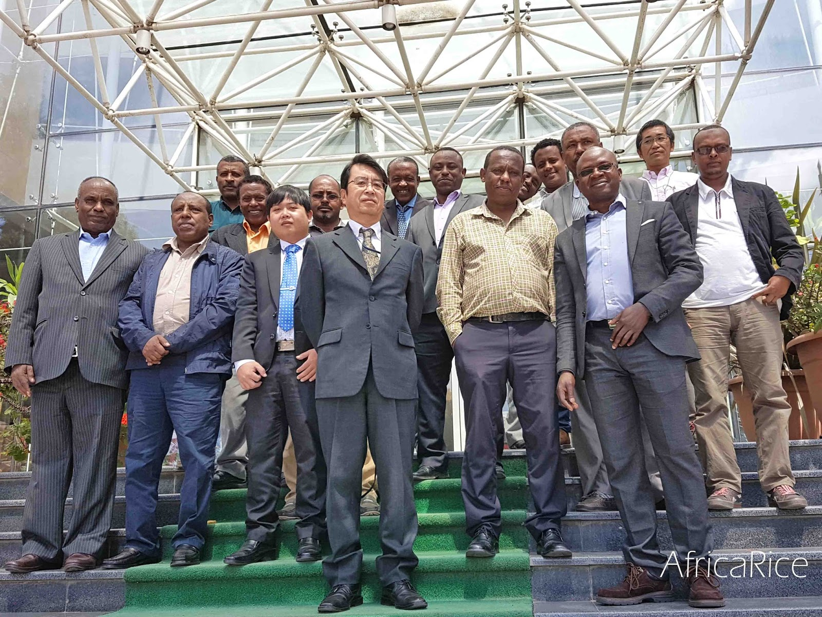 AfricaRice News blog: AfricaRice and FAO train national