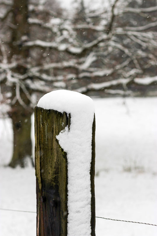 Winter, Moments, schneebedeckter Zaunpfahl