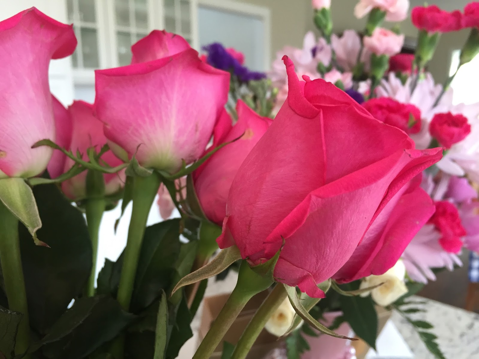 Pink Roses and Romantic Comedies