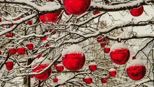 Buongiornolink - Le 20 curiosità sul Natale