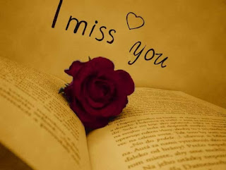 image of i miss you with red rose in the book