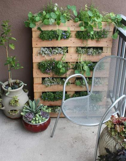 This recycled pallet makes a great garden planter