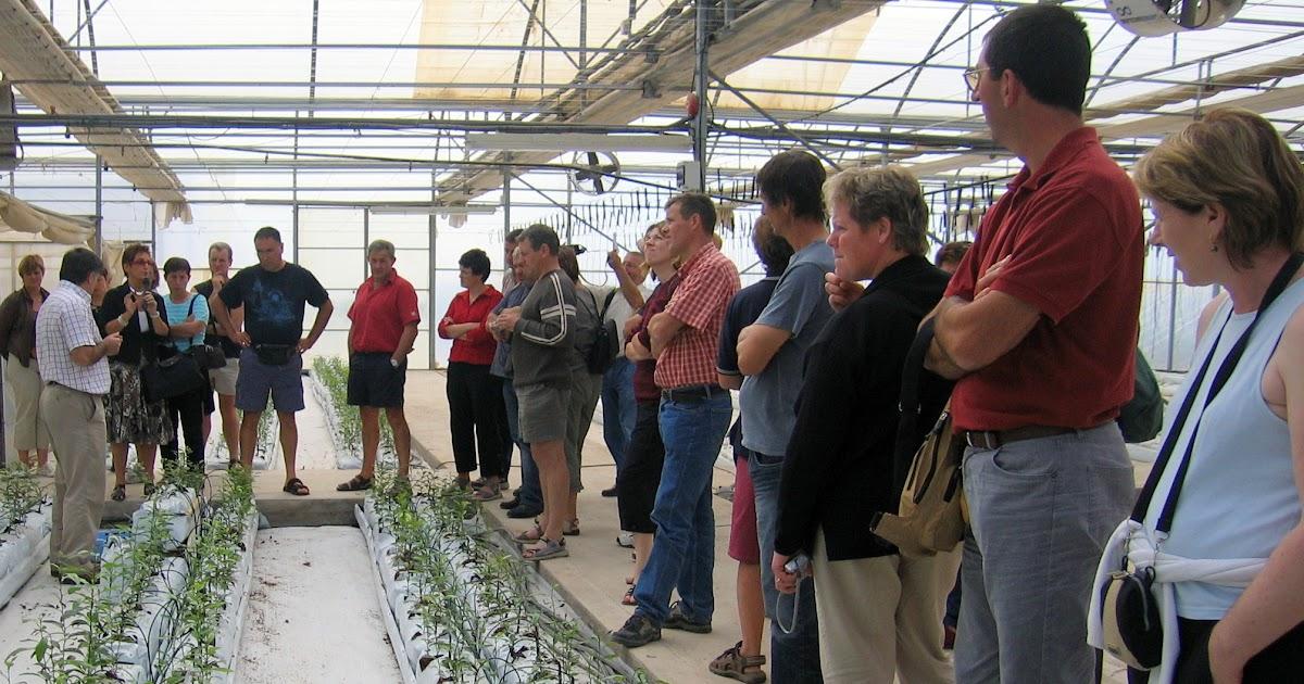 Thm tecnolog as de la horticultura mediterr nea el for Horticultura definicion
