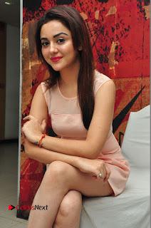Actress Ragini Nandwani Pictures in Short Dress at Siddhartha Movie Success Meet  0075.JPG